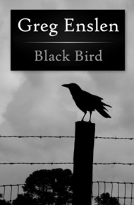 Black_bird_cover_final