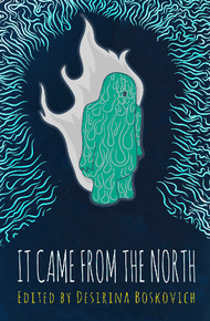 It_came_from_the_north_cover_final