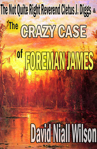 The_crazy_case_of_foreman_james_cover_final